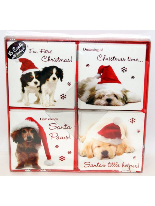 16 Square Cards With Envelopes - Cute Dogs